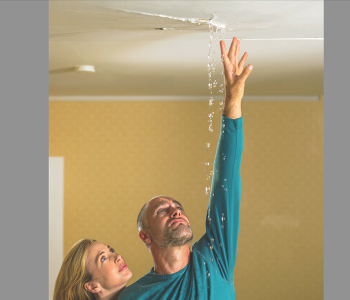 Water Damage Paso Robles water damage restoration specialists release report on mold and asthma