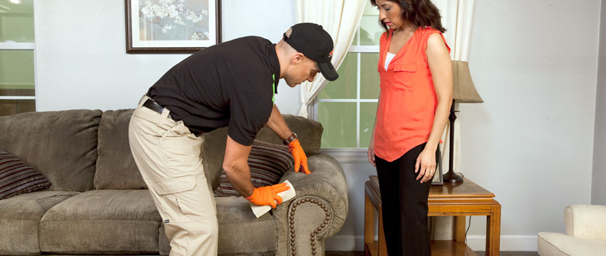 Atascadero, CA carpet upholstery cleaning